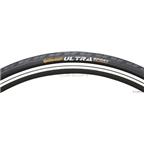 Continental Ultra Sport Tire 700 x 23 Folding - Black