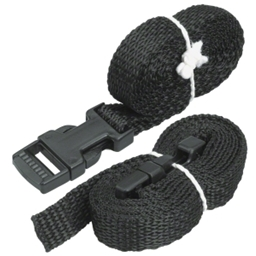 Saris Wheel Stabilizing Strap (set of 2)